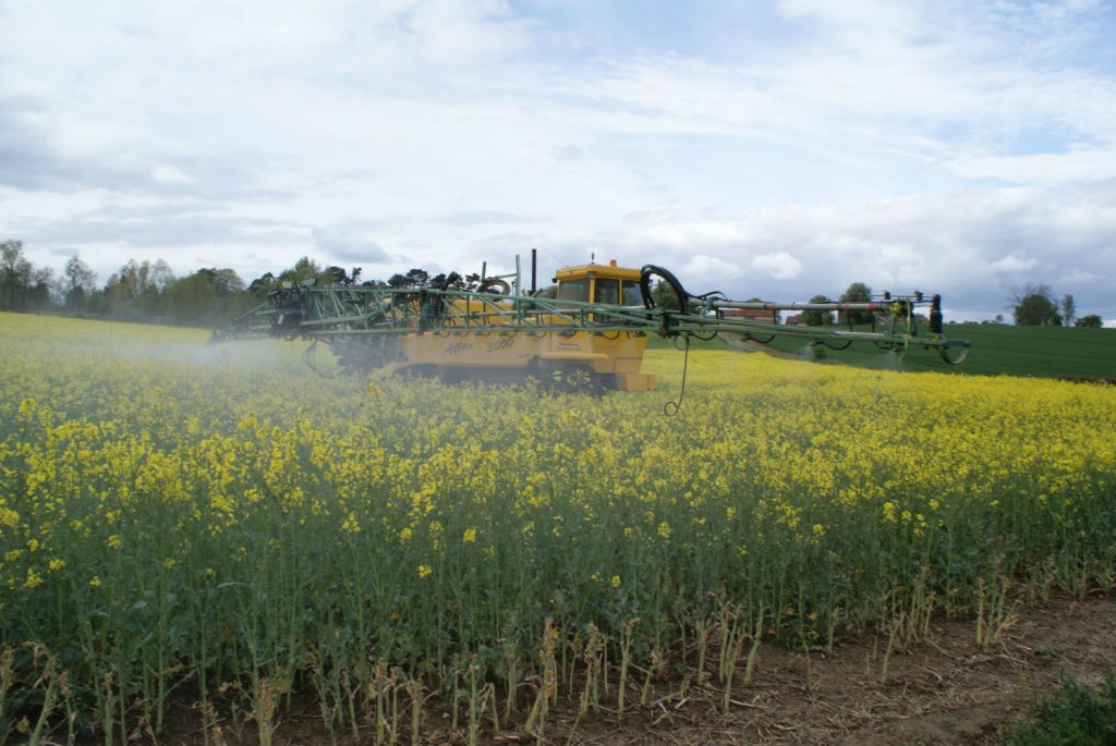 spraying insecticide over oilseed rape