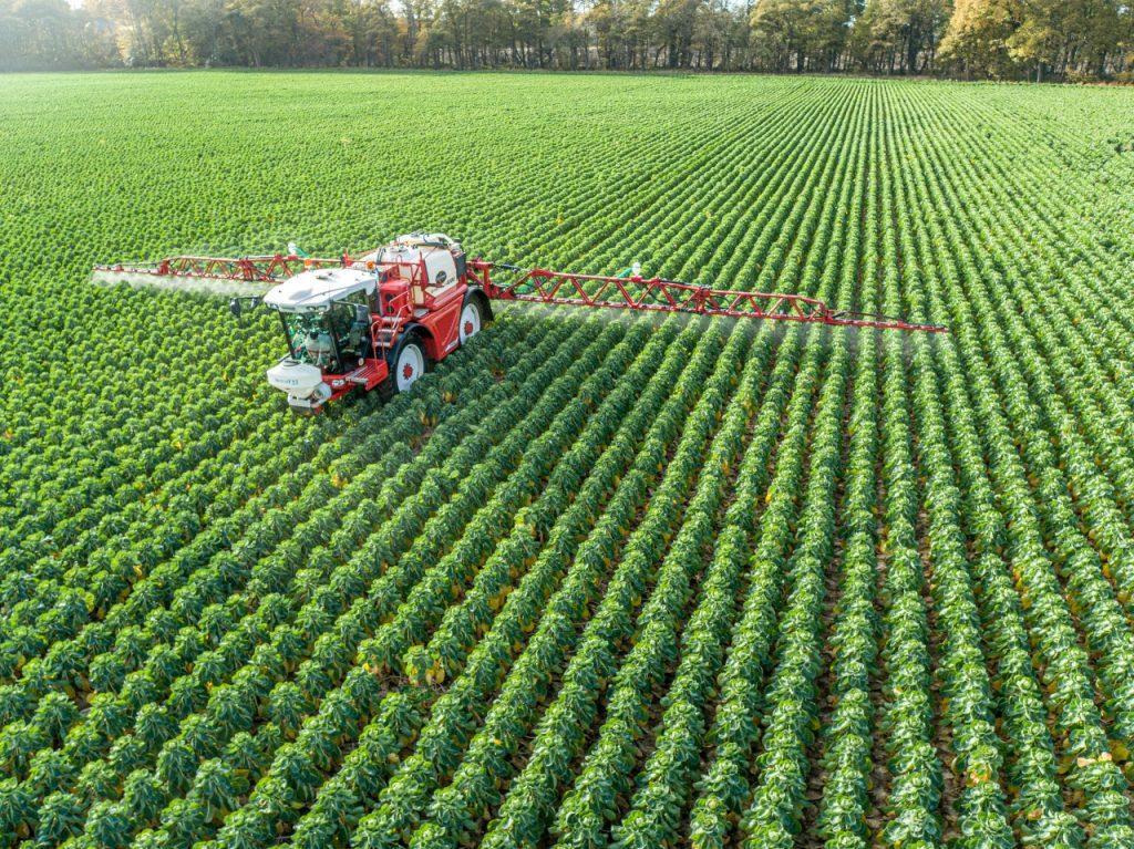 Bargam Grimpeur spraying brussel sprouts